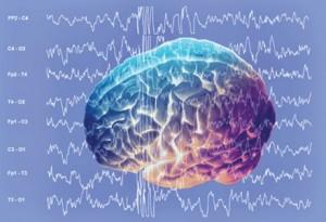 undele alpha din creier