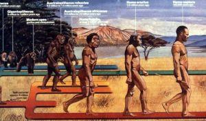 Cateva teorii fanteziste despre evolutia omului.jpg-.jpg-