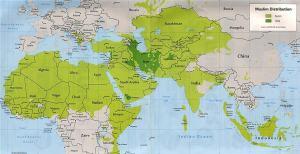 Sunnitii si siitii