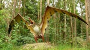 Pterodactilii, o realitate sau un mit