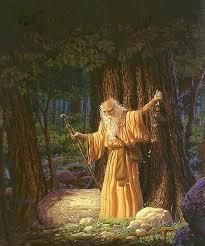 religia-celtilor-druizii-2