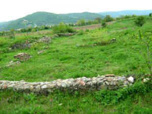 Ruinele castrului roman de la Hinova