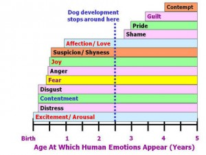 Chart of Canine Emotional Development