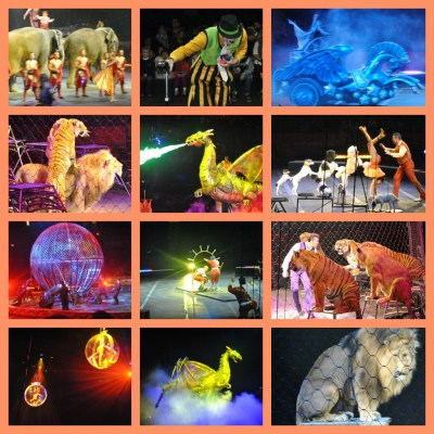 Dragons Circus Review
