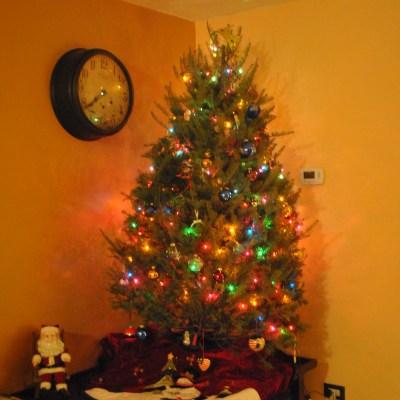 """Oh Christmas Tree!"" :: 2012"