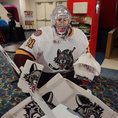 Chicago Wolves: Hockey for the Whole Family