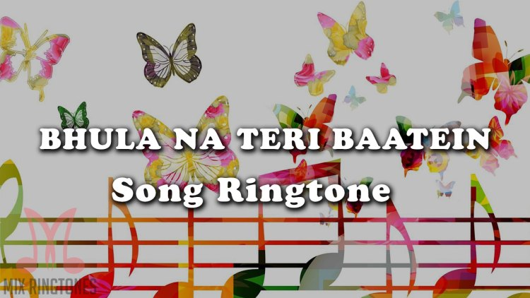 Bhula Na Teri Baatein Mp3 Song Ringtone By Stebin Ben Free Download for Mobile Phones