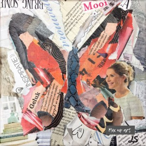 Vlinder - €50,- Collage (19 x 19)