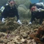 下地島でビーチ体験ダイビング