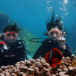 中の島ビーチ体験ダイビング