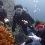 宮古島でファンダイビングと体験ダイビング