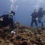 宮古島 下地島で体験ダイビング