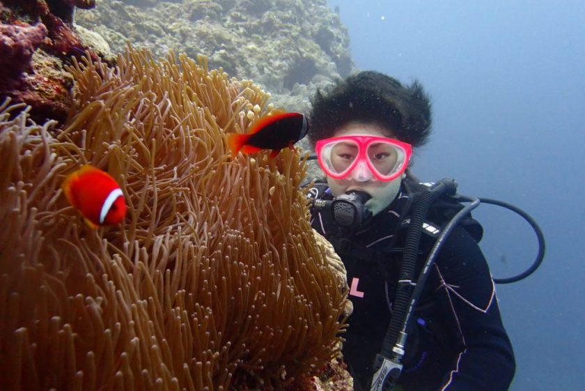 宮古島で体験ダイビング ハマクマノミ