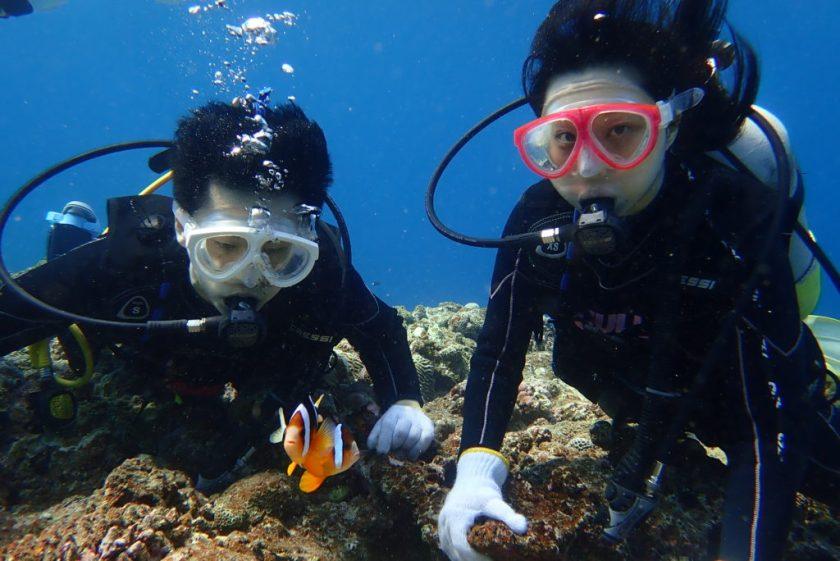 宮古島で体験ダイビング・クマノミ