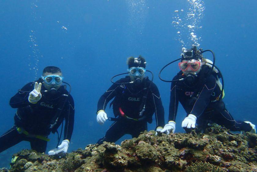 宮古島ファンダイビングに体験ダイビング・サバ沖