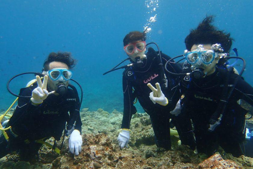 下地島体験ダイビング
