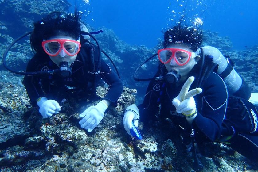 サバ沖で体験ダイビング