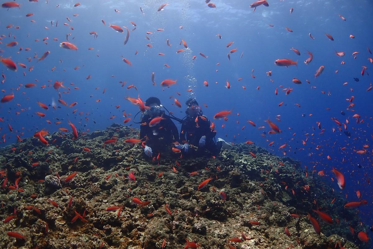 伊良部島へ体験ダイビングにシュノーケリング