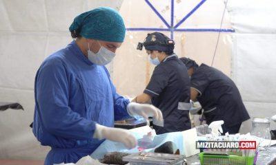 Campaña de esterilización en Tuxpan