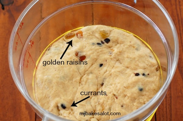 The spiced dough for the hot cross buns is studded with lots of golden raisins and Zante currants and is in the proofing bucket for the bulk proof. | mjbakesalot.com