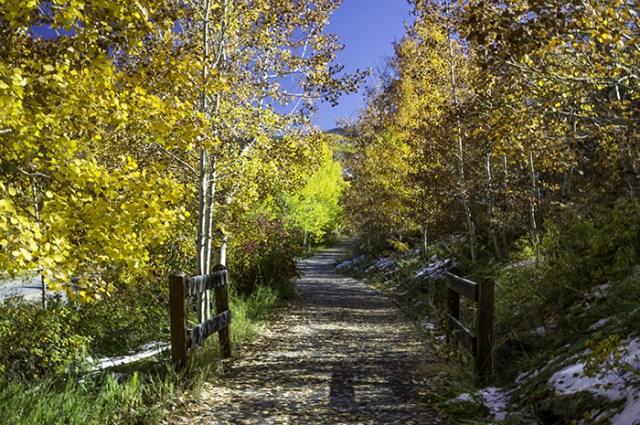 Beaver Creek Bike Path