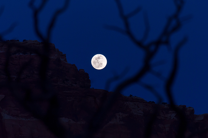 Full Moon Rising over Desert