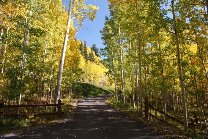 Telluride Colorado Fall