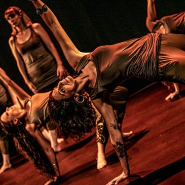Stage Tribal Fusion BellyDance – Dimanche 31 octobre
