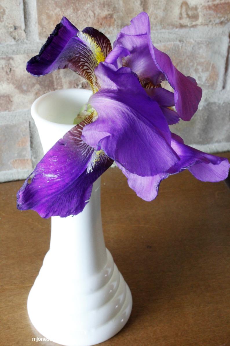 #violetiris #mjonesstyle #milkglassvase