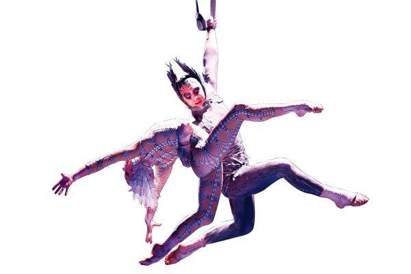 1308-ARTS-LEAD-STORY-FLYING-HIGH-Swans_IJustCantStopLovingYou_8faa995660