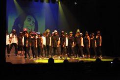 Gala-2013-Il-était-une-fois-le-royaume-magique-de-MK-Dance-Studio-Pontault-Combault-77-(13)