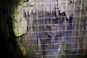 龍河洞23