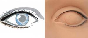 Micropigmentación: Detalle Ceja