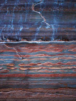 Mark Kelly - 'Under_The_Sea V' - (98cm x 78cm)