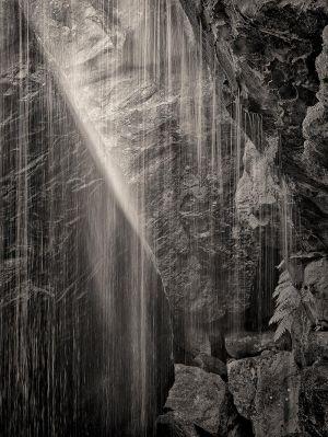 Silver Distinction  - Landscape