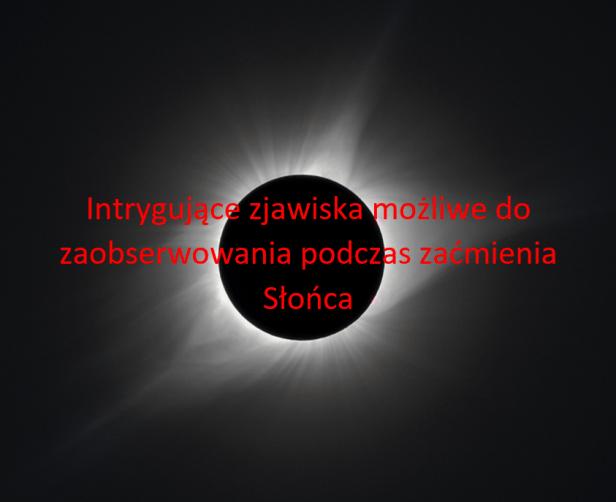 Zaćmienie Słońca - intrygujące zjawiska