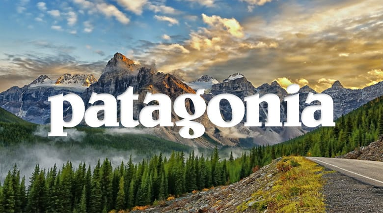 Patagonia does customer segmentation and targeted marketing right.