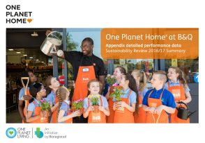 OPH at B&Q, Appendix detailed performance data 2017 front cover