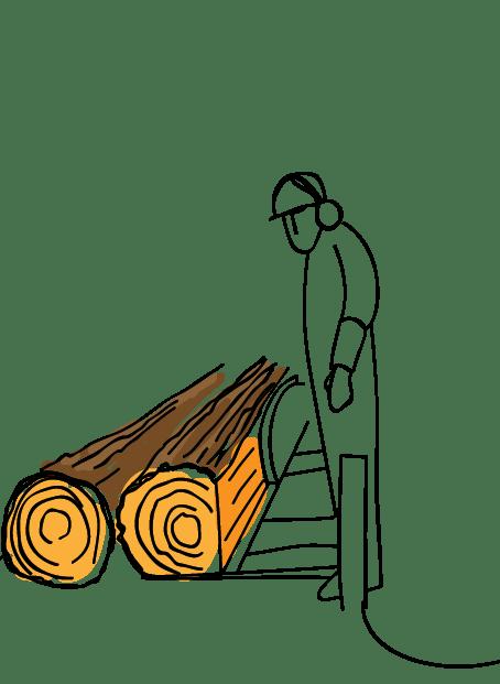 B&Q Forest Friendly Illustration, Timber cutting