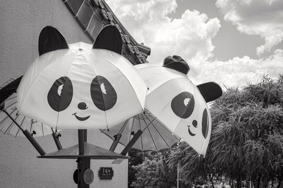 MLCreations Photography: WDW in B&W &emdash; Pandabrella?