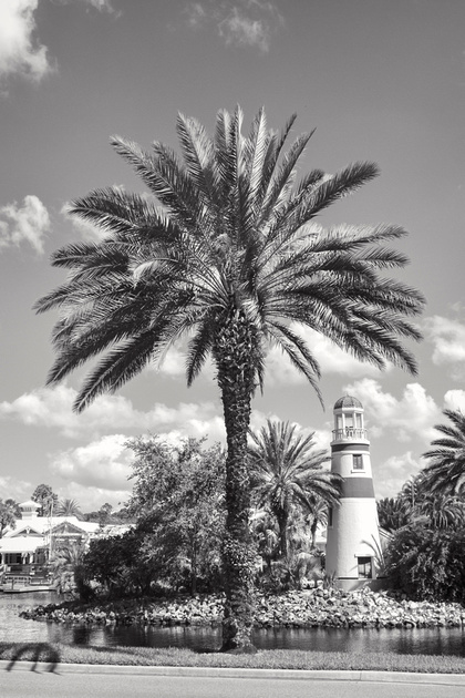 MLCreations Photography: WDW in B&W &emdash; Beautiful Days