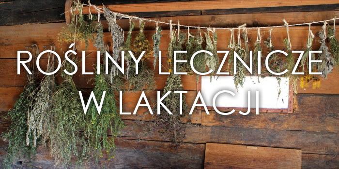 Rośliny lecznicze w laktacji