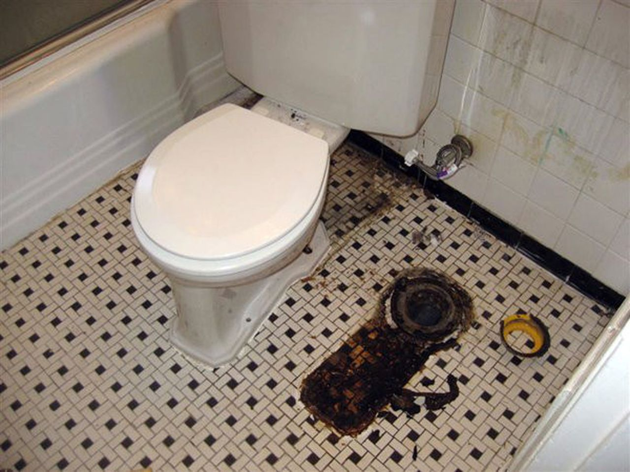 If Toilet Isn T Sitting Pretty Air Can Be Pretty Foul Faulty Seal Can Let Gas Escape Mlive Com