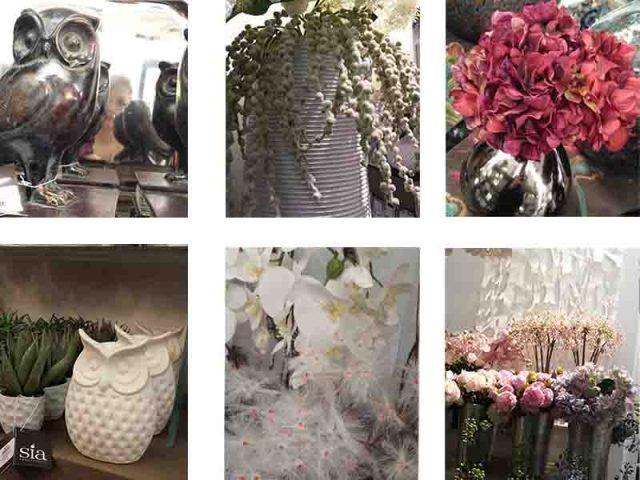 fleurs-sia-mllebride