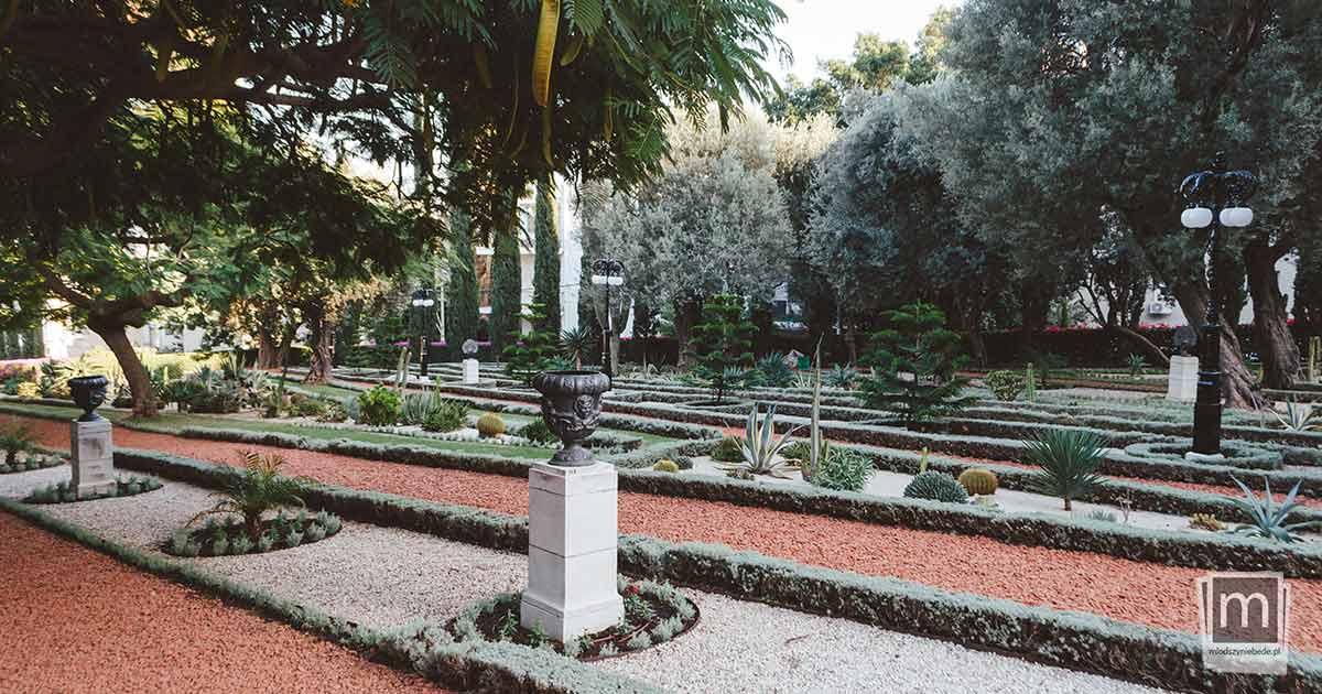 Ogród kaktusów - Hajfa