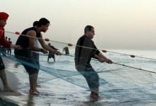 صيادو غزة يشتكون من تقليص تصدير الأسماك ويدعون لوقفة احتجاجية
