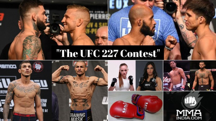 The UFC 227 Contest -