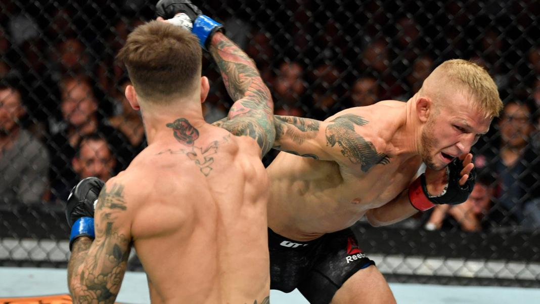 The beef is never over! TJ Dillashaw happy to continue 'ruining Cody's career' - Dillashaw