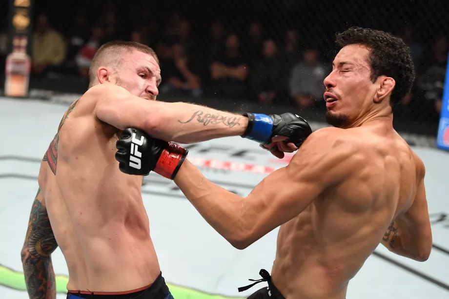 UFC Fight Night 159 Results - Steven Peterson Knocks Out Martin Bravo With a Jaw Dropping Knockout -