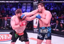 VIDEO. Rezultatele și rezumatele luptelor de la Bellator 194: Matt Mitrione vs Roy Nelson